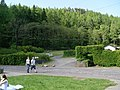 Forestry by B837 in Balmaha - geograph.org.uk - 828100.jpg