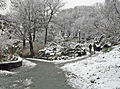 Fort Tryon Park Winter Walks 2013.jpg