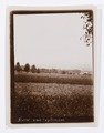 Foto med tegelbruket - Hallwylska museet - 102241.tif