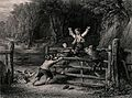 Four boys ride on a five-bar gate in a woodland. Engraving b Wellcome V0040202.jpg