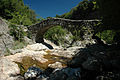 France Rhone-Alpes Ardeche Jaujac pont romain 01.jpg