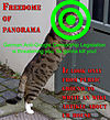 Freedome of panorama lolcat threatened.jpg