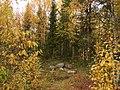 G. Apatity, Murmanskaya oblast', Russia - panoramio (16).jpg