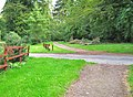 Galloway House gardens - geograph.org.uk - 1563933.jpg