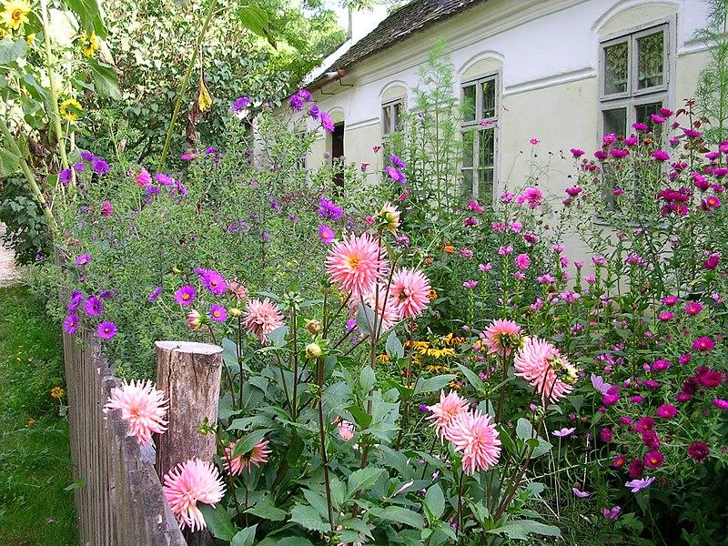 File:Garten Sattlerhaus.jpg
