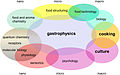 Gastrophysics and its overlap with different scientific disciplines as motivated by its multi-scale character.jpg