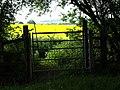 Gate - geograph.org.uk - 1326356.jpg