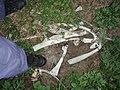 Gerippe im Straßengraben P5230392.jpg