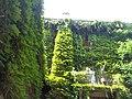 Giardino botanico di Brera (Milan) 171.jpg