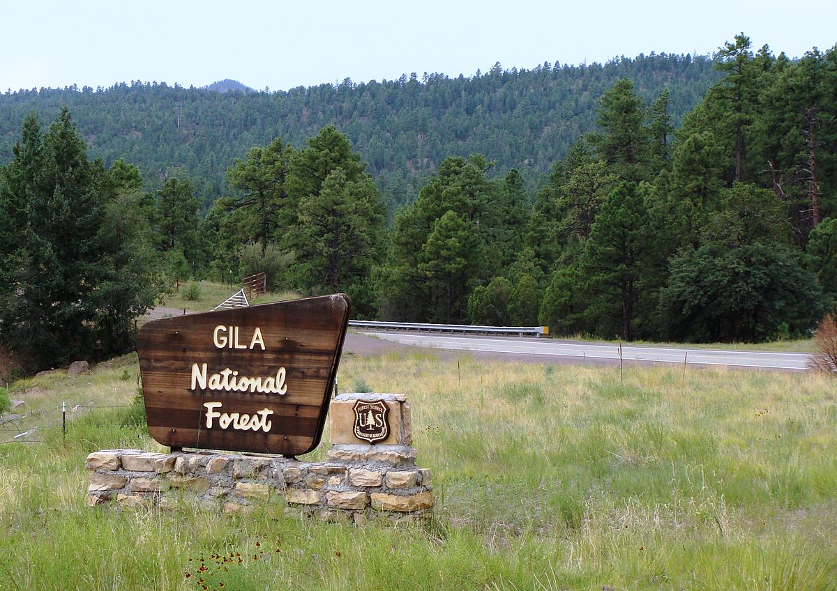 Gila National Forest - Wikipedia