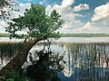 Glubokoe lake.jpg