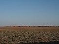 Gobi Desert (11532607835).jpg