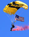 Golden knights img8.jpg