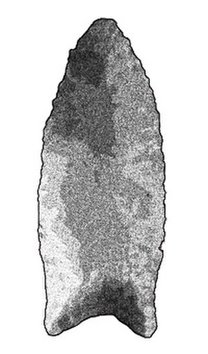 Golondrina point -  A Golondrina projectile point with a mildly serrated edge