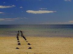 Golspie Beach - geograph.org.uk - 529617.jpg