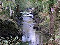 Gorge in lower Afan Cothi Valley - geograph.org.uk - 1544227.jpg