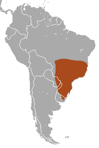 Greater Naked-tailed Armadillo area.png