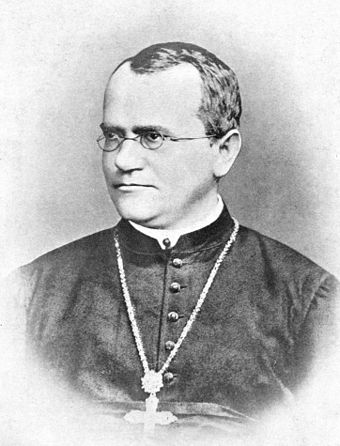 Gregor Mendel, Augustinian Friar and scientist, who developed theories on genetics for the first time. Gregor Mendel Monk.jpg