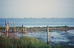 Grevelingen - View of the Grevelingenmeer