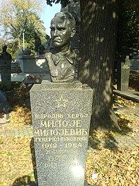 Grob Miloja Milojevica.JPG