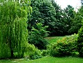 Grovelands Park, Belfast - geograph.org.uk - 833164.jpg
