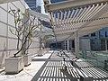 HK 中環 Central 國際金融中心 IFC 平台 terrace 風景 view April 2020 SS2 30.jpg