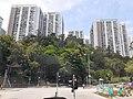 HK 城巴 619 CityBus 遊車河 tour view 觀塘區 Kwun Tong District 康寧道 Hong Ning Road 協和街 Hip Wo Street June 2020 SS2 03.jpg