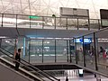 HK 赤鱲角 Chek Lap Kok 香港國際機場 Hong Kong Int'l Airport Terminal T1 August 2019 SSG 29.jpg