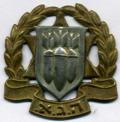 Hagana Ezrahit IDF Cap Badge.png