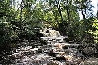 Hallamoella waterfall.jpg