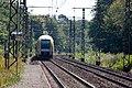 Halte Fontainebleau - Forêt IMG 8557.jpg