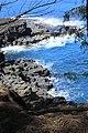 Hanalei, Kauai, Hawaii - panoramio (7).jpg