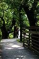 Harpeth river greenway at Old harding pike - panoramio.jpg