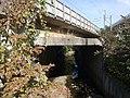 Hattan bridge.jpg