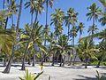 Hawaii Pu uhonua 8288.jpg