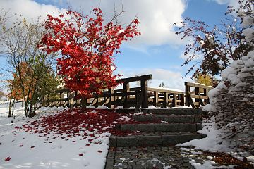 Herbst im Kurpark Bad Schlema, Sachsen...IMG 7637Schlema.jpg