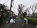 Higashiasakawamachi, Hachioji, Tokyo 193-0834, Japan - panoramio (202).jpg