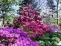 Hillwood Gardens in April (16977398013).jpg
