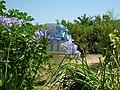 Holidays Greece - panoramio (239).jpg