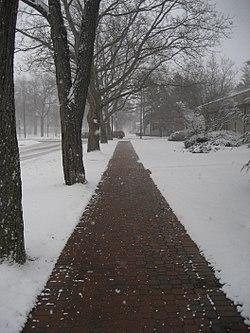 Holland - Home of the heated sidewalks.jpg