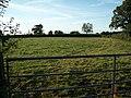 Holnest, pastureland - geograph.org.uk - 565076.jpg