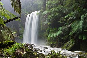 A more steady-state view of nature: Hopetoun Falls, Victoria, Australia. Much attention has been given to preserving the flora and other natural characteristics of the view, while allowing ample access for visitors to this much-visited site.