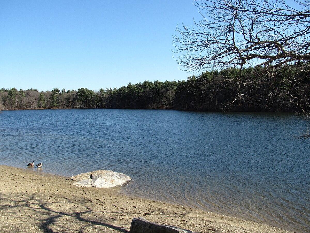 Houghton's Pond - Wikipedia