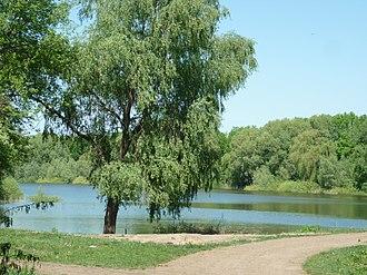 Shpola - Image: Hovkivka