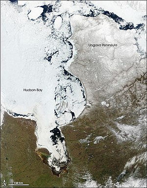 Hudson Bay - In late spring (May), large chunks of ice float near the eastern shore of the bay, while the center of the bay remains frozen to the west. Between 1971 and 2007, the length of the ice-free season increased by about seven days in the southwestern part of the Hudson Bay, historically the last area to thaw.