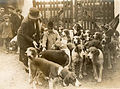 Hunting dogs Ireland 1924 (6399684361).jpg