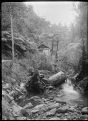 Hut surrounded by bush, beside a stream. ATLIB 291866.png