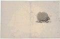 Hystrix javanica - 1700-1880 - Print - Iconographia Zoologica - Special Collections University of Amsterdam - UBA01 IZ20600032.tif