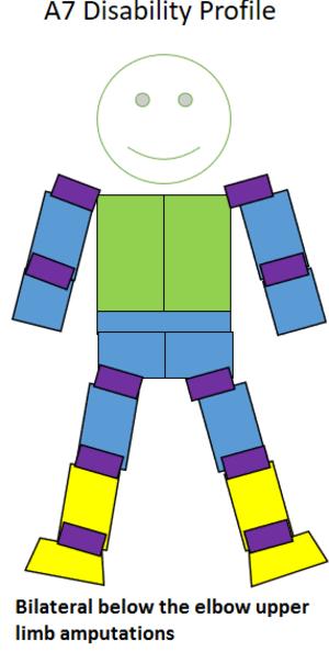 T45 (classification)