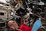 ISS-56 Ricky Arnold performs operations for the PCG13 experiment.jpg